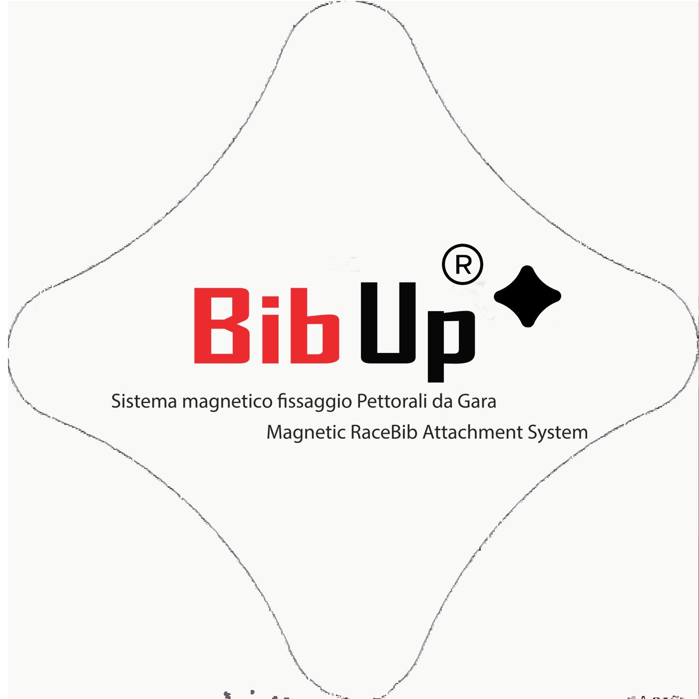 Home page bib up bibup sistema magnetico per fissaggio for Sistema anticalcare magnetico